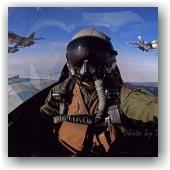 Fighter Pilot Waldo Waldman